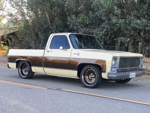 1979 Chevrolet C10 – runs and drives good for sale